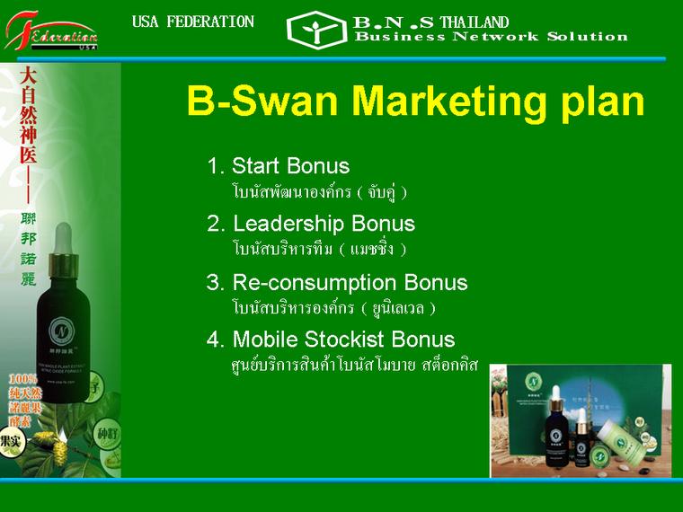 แผนการตลาด บี-สวอน B-Swan