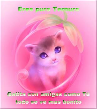 Gracias mi Querida Gata Coqueta