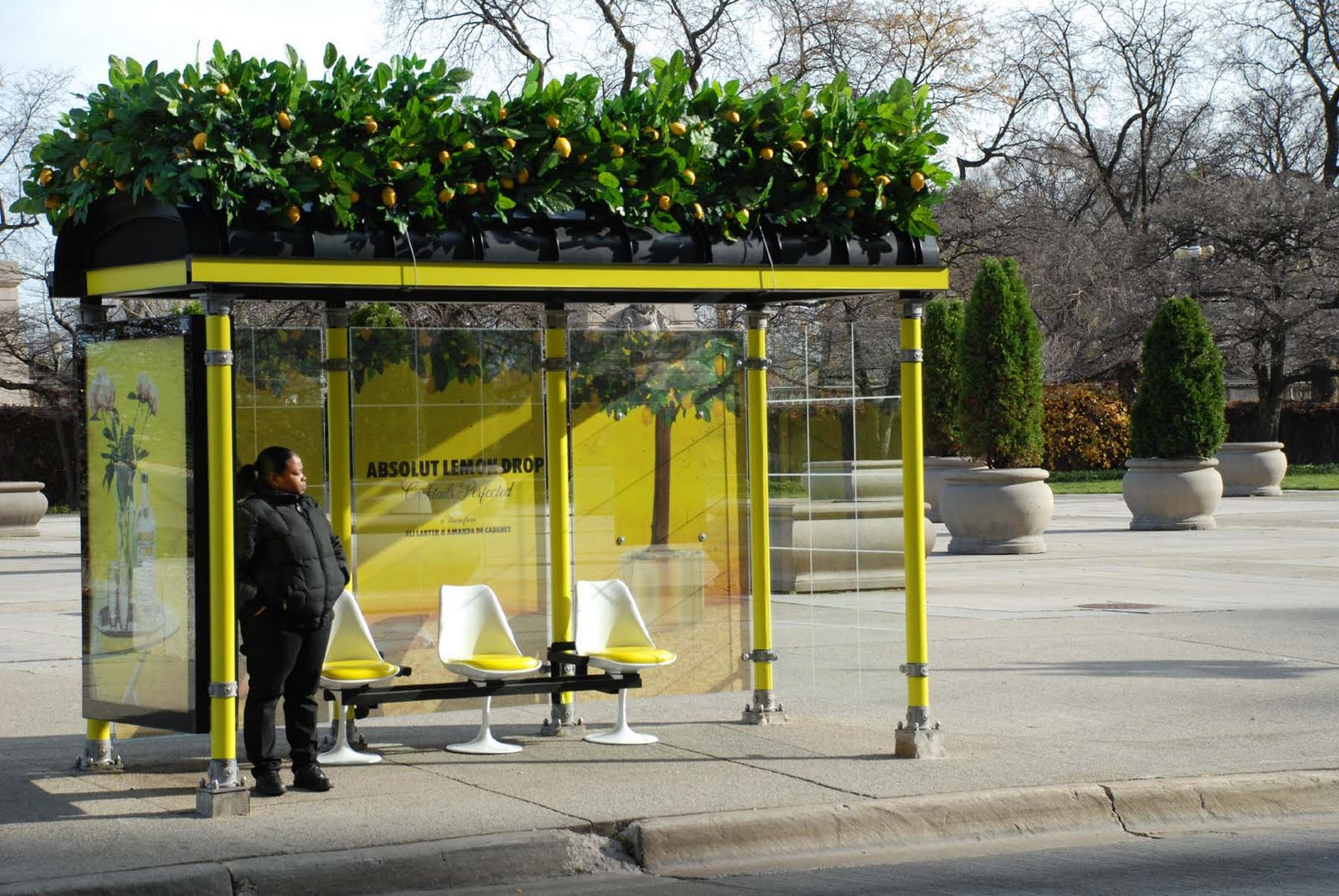 W W Media Image: ABSOLUT BUS STOP