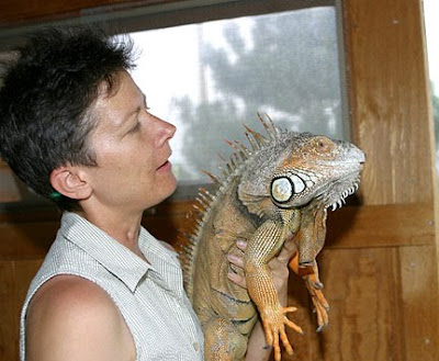 A Pet Care Person with iguana Pet