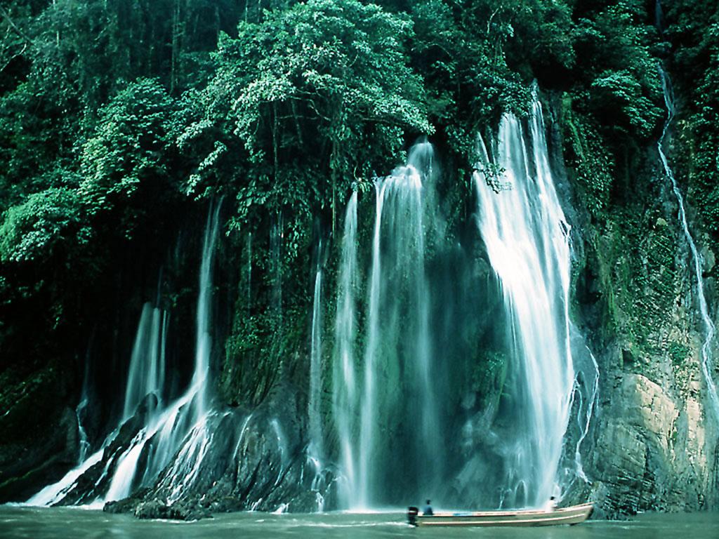 animals zoo park waterfalls wallpapers free waterfall