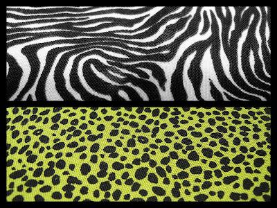 animal print cebra