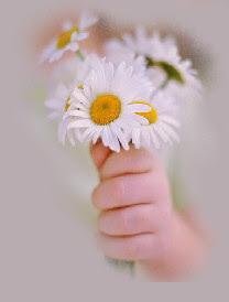 Flores para nós