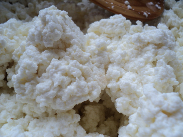 Cariboo Gals: Homemade Cottage Cheese Recipe