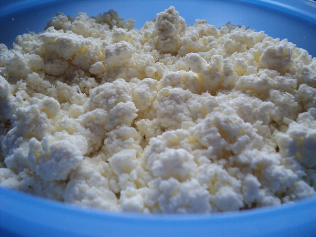 Admirable Cariboo Gals Homemade Cottage Cheese Recipe Download Free Architecture Designs Ogrambritishbridgeorg