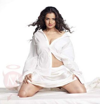wallpaper bollywood actress. ollywood actress amisha patel