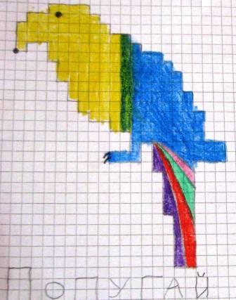 Как нарисовать по клеточкам попугая