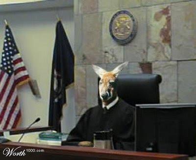 http://3.bp.blogspot.com/_NfN_EWerqnQ/TFufhFeB4lI/AAAAAAAAA4M/w9ybuotfUXs/s400/kangaroo_court.jpg