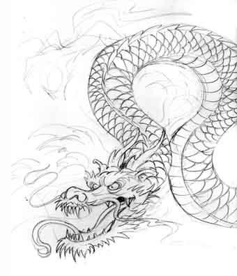 dragon tattoos sketches. dragon tattoo sketches.