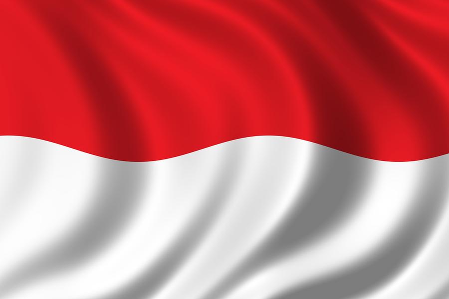 nec versa e6210 spe indonesia