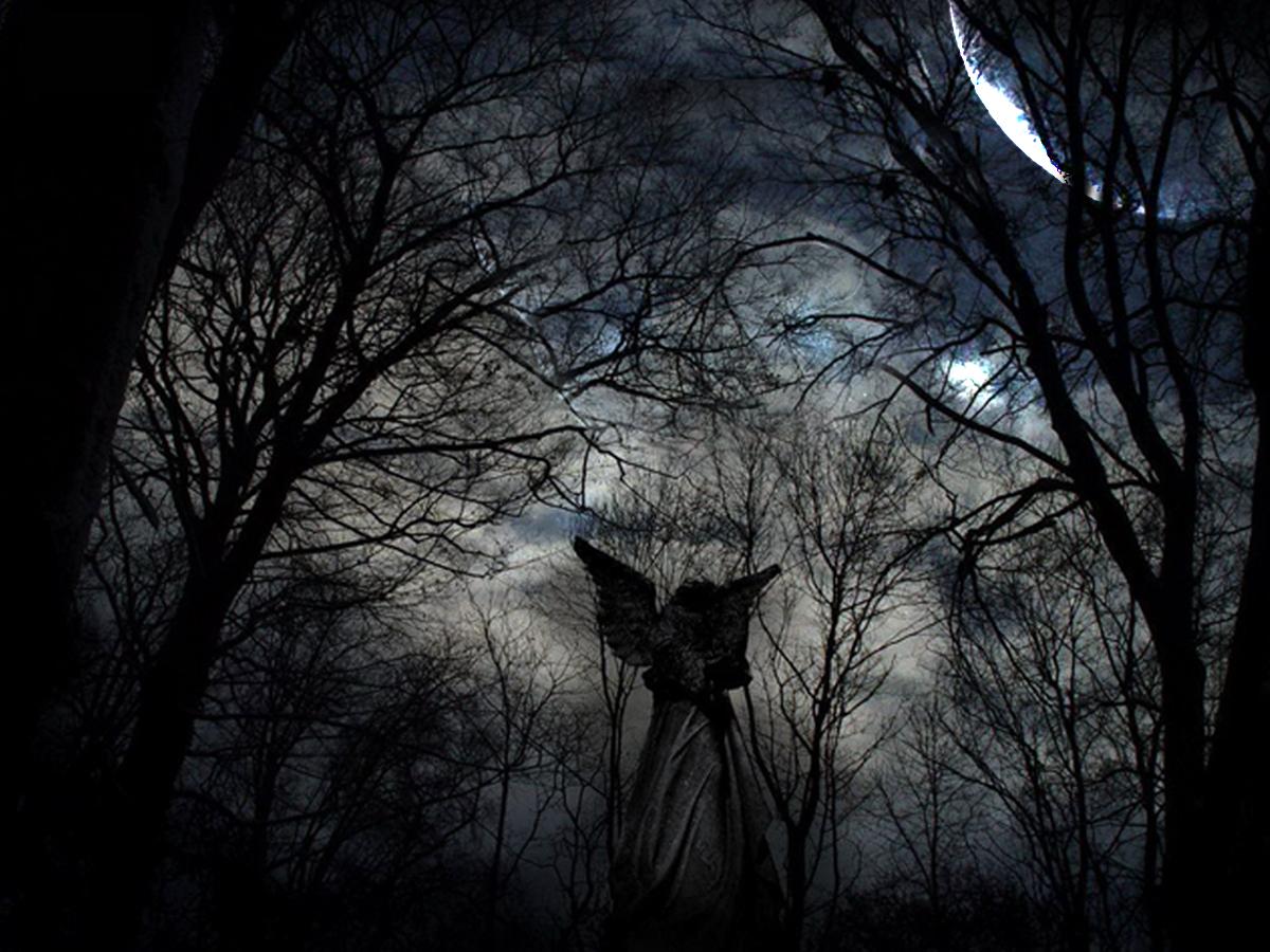 http://3.bp.blogspot.com/_NffVwyTensQ/TP146hiAVjI/AAAAAAAAAC4/h22psD8C0KU/s1600/fallen+angel.jpg