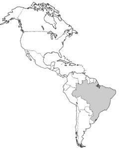 Olhar Geogrfico Formas de diviso do continente americano