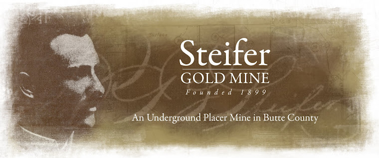 STEIFER GOLD MINE