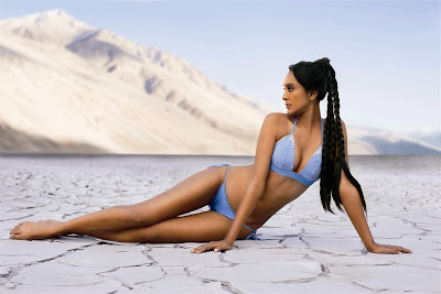 Kingfisher Swimsuit Calendar 2008