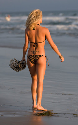 Ashley Roberts bikini photos