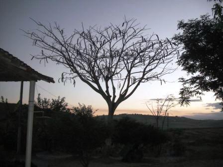 Foto9: Olívia de Cássia