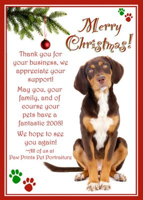 The greeting new year dog christmas cards dog christmas cards m4hsunfo