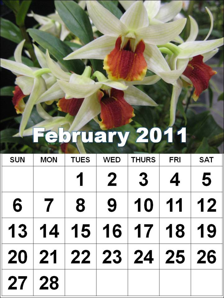 2011 calendar wallpaper free download. Download Printable February