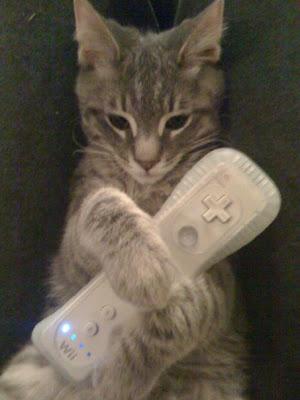 Cat Wii