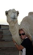 HugS & Camels!!!