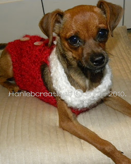 CROCHET KNIT PATTERN FOR DOG SWEATER « CROCHET FREE PATTERNS