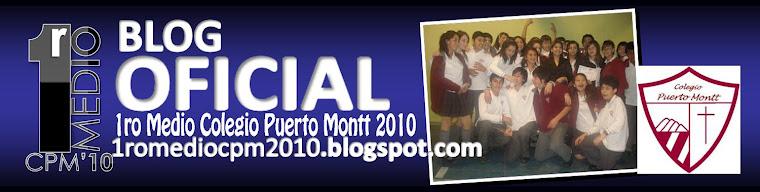 1ro Medio Colegio Puerto Montt 2010