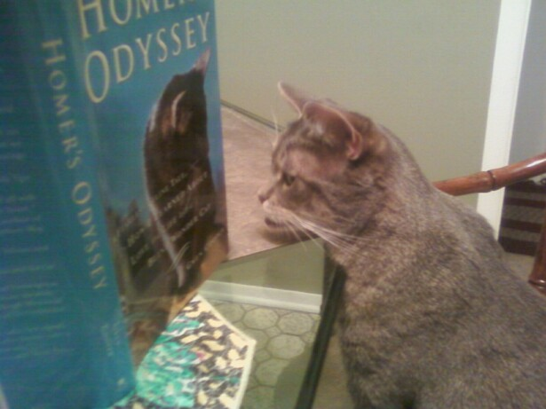 Odyssey Homer Movie. quot;Homer#39;s Odysseyquot; A Book by