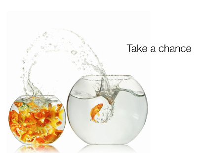 Pictures Quotes on Take A Chance Png