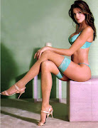 Stephanie Seymour Biography