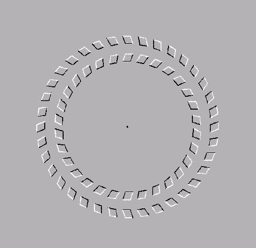 ilusiones opticas en imagenes