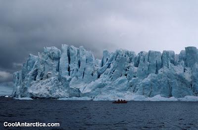 Cool Antarctica (5) 1