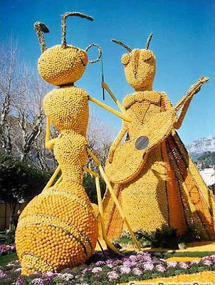 ants made out of oranges