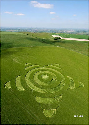 Beautiful art in the fields (10) 10
