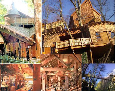 One of the largest wooden tree houses in world