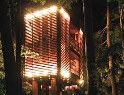 4 Tree house (2) 1