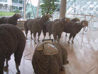 Phone Lambs (4) 1