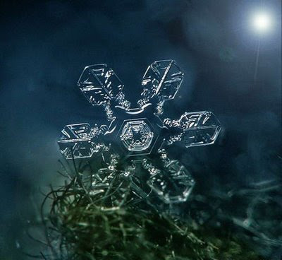 Beautiful Snowflakes (21) 5