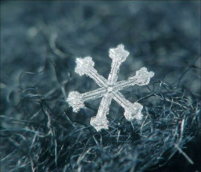 Beautiful Snowflakes (21) 13