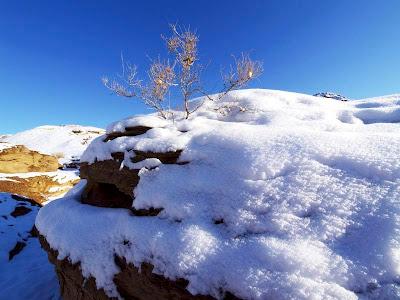 Snow In Desert
