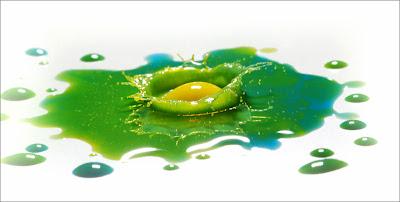 liquid_photo_00005