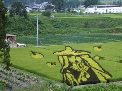 Beautiful Rice Field Art 16
