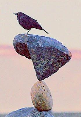 Rock Balancing 1