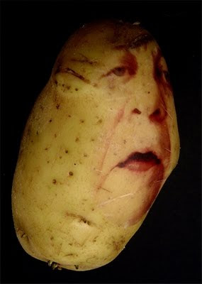 Potato Art and Sculptures (30) 8