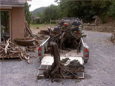 Driftwood Horse Art (14) 5