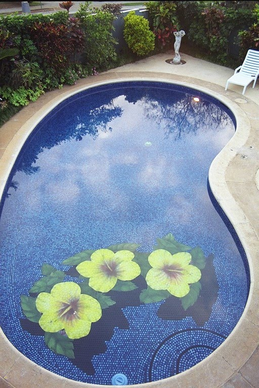 Swimming Pool Art : Changing the look of swimming pools d ceramic tile art