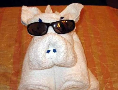 Cute Folded Towel Animals (7) 6