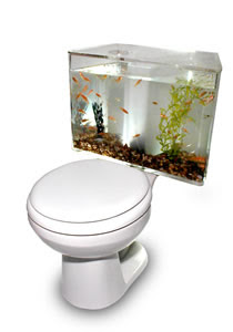 Aquarium toilet