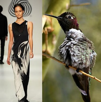 Fashion Dresses - Hummingbird Theme (9) 3