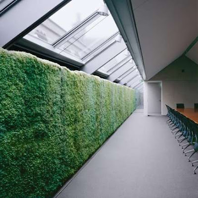 Green wall - Indoor Landscaping (5) 1