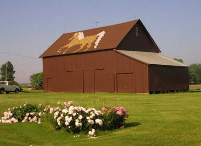Roof Art Barns (18) 12